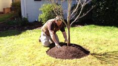 Learn more at www.cartwrightlandscaping.com (Note: This image is copyrighted)