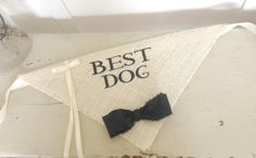 Dont forget your furry family members on your wedding day! These bandanas are perfect to take pictures and include them in your most important