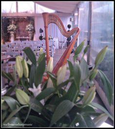 - Melbourne Harp Music