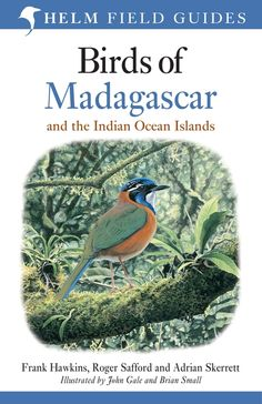 The Malagasy region contains one of the most extraordinary concentrations of biodiversity in the world. Its recognition as a zoogeographic region in its own right has recently been confirmed and, all taxa combined, the region was found to hold the second most distinct assemblage of vertebrates in the world after the Australian region, despite being the smallest of them all.This new field guide in the Helm Field Guides series covers the whole of the Malagasy region, which comprises the…