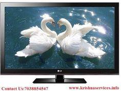 Krishna services Pvt Ltd: Krishna Services provide LED/LCD,TV On Rent In All...