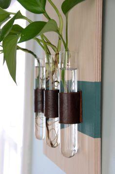 DIY test tube vases                                                                                                                                                                                 More