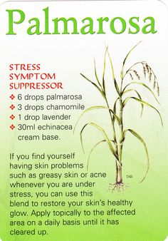 Natural remedies - Stress and skin problems: Palmarosa oil Essential Oil Carrier Oils, Essential Oil Diffuser, Essential Oil Blends, Palmarosa Essential Oil, Healing Herbs, Medicinal Herbs, Natural Healing, Stress Symptoms, Tips