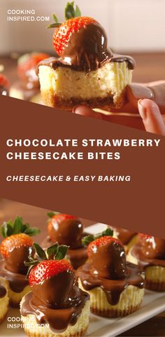 Chocolate Strawberry Cheesecake Bites Chocolatecovered strawberries cheesecake OMG Simple ingredients and delicios taste Healthy Cake Recipes, Delicious Desserts, Dessert Recipes, Baking Desserts, Cake Baking, Pastry Recipes, Keto Desserts, Strawberry Cheesecake Bites, Covered Strawberries