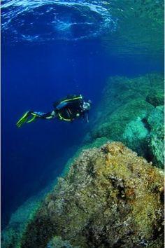 Concours de photographie sous marine à Monaco / News & Photos / Culture