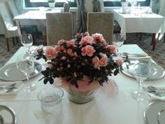 Restauracja w Swarzędzu - http://astoria-romantica.pl/blog/restauracja-w-swarzedzu/