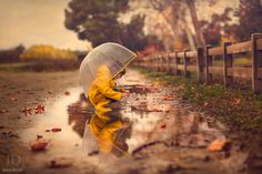 """""""Wet Leaves"""" by Jessica Drossin (https://500px.com/photo/95904811/wet-leaves-by-jessica-drossin)"""