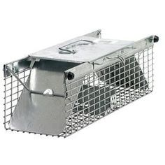 Havahart Animal Trap (Non-Lethal) at Lowe's. Regain control over the squirrels, rats, chipmunks, and weasels that invade your yard with the Havahart Small Animal Trap. Designed by trapping Action Door, Traps Workout, Flying Squirrel, Live Animals, Small Animals, Solid Doors, Opossum, Pet Cage, Rodents