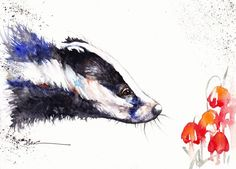 Original Watercolour Painting by Be Coventry,Animals,Realism,Badger and Poppies