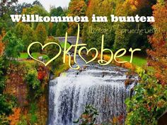 OKTOBER ~ Weinmond Most of us simply don't have time to shop around in person. Pretty Phone Wallpaper, Iphone Wallpaper Fall, Wallpaper Backgrounds, September Wallpaper, Hello September Images, Hello October, Neuer Monat, October Quotes, Disney Background