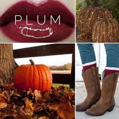 Will this color be the finishing touch to your perfect fall outfit? Fall in love with LipSense this fall season. Plum Lipsense, Fall Lips, Long Lasting Lip Color, Fall Color Palette, Color Palettes, Glitter Gloss, Perfect Fall Outfit, Color Collage, Lip Swatches