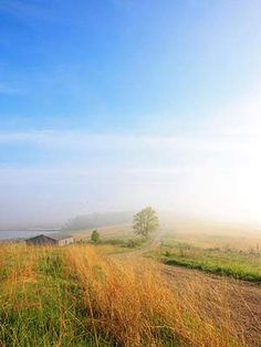 Experience misty mornings; A path at the end of Palmatory Street in the small town of Horicon leads into Horicon Marsh State Wildlife Area.