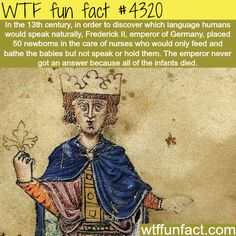 WTF fun fact infant experiment