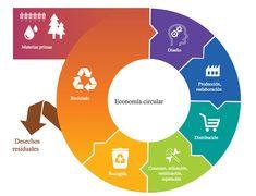 La economía circular se basa en el diseño de productos y procesos productivos…