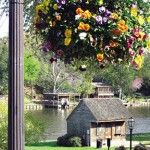 Flowers bloom along Front Street, overlooking Cane River Lake