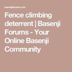 Fence climbing deterrent | Basenji Forums - Your Online Basenji Community