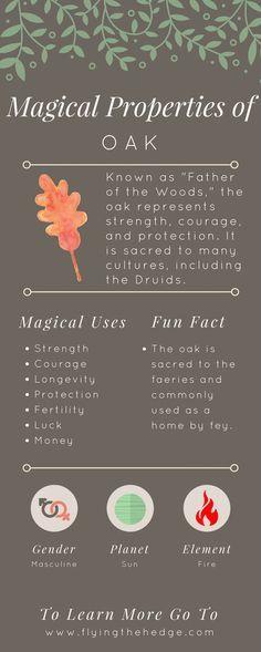 Magical Properties of Oak