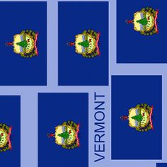 Smartphone Case - State Flag of Vermont XIII