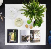 Desde arriba se pueden apreciar claramente los elementos decorativos de esta mesa de centro: plantas, platos, libros, una vela y objetos varios.