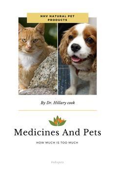 Medicines and pets. How much is too much?