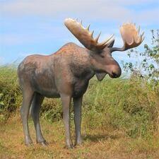 Woodland Animal Garden Statues - Deer, Rabbit & Fox Garden Statues - Design Toscano Animal Statues, Outdoor Landscaping, Garden Statues, Classic Furniture, Exterior, Sculpture, Design, Animals, Animales