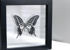 Butterflies at home by www.ensuus.blogspot.nl