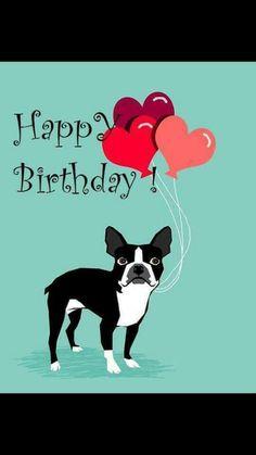 Boston Terrier Love, Boston Terriers, Best Apartment Dogs, Happy Birthday, Poster, Animals, Happy Brithday, Animales, Animaux