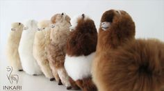 'Meet our Fluffy Alpaca Family' These beautiful cuddly alpacas are handmade from alpaca wool in Peru. They make a very special, unique present or the perfect couch companion for yourself! This is definitely the cutest and softest alpaca family that you will ever meet! Visit our website and meet the whole alpaca family: http://www.inkari-alpaca.com/en/alpacas/?utm_content=buffer35522&utm_medium=social&utm_source=pinterest.com&utm_campaign=buffer