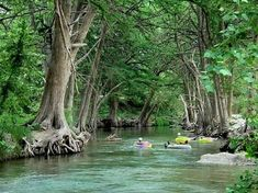 Tubing the Frio River in Texas Hill Country... lived about 45 min from there once & sure do miss it.