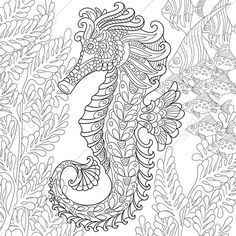 Zentangle stylized cartoon seahorse and tropical fish among seaweed. Hand drawn sketch for adult antistress coloring page, T-shirt emblem, logo or tattoo with doodle, zentangle, floral design elements - Buy this stock vector and explore similar vectors at Coloring Book Pages, Coloring Sheets, Arte Quilling, Zen Colors, Doodle Coloring, Printable Coloring, Design Elements, How To Draw Hands, Clip Art