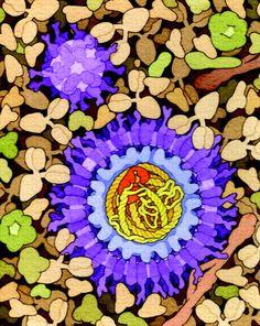 Stunning molecular biology illustrations look like floral abstract art