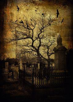 Virginia City Grave Yard ~ Photo by tikiglow.  Happy Halloween.