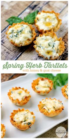 Spring Herb Tartlets with Honey and Goat Cheese - creamy, smooth filling with a fresh burst of herb-y flavour and a touch of sweetness all nestled inside a buttery phyllo pastry cup!
