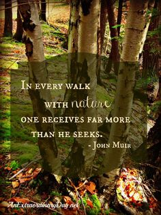 So, so true. He knew what was up, that John Muir.
