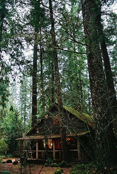 little cabin in the woods (by anneparker) Little Cabin, Little Houses, Ideas De Cabina, Cabin In The Woods, Log Cabin Homes, Log Cabins, Cabins And Cottages, Cozy Cabin, Cozy Cottage