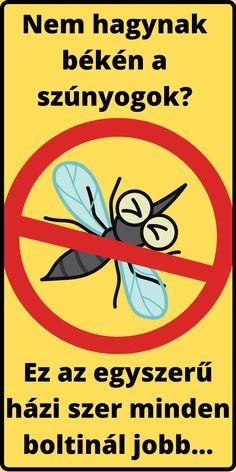 Az interneten találhatók a különböző házi szerek a szúnyogok ellen, de ha az igazi nagy tutit keresed, ami tényleg hosszan működik és hatékonyan, akkor most itt van! Erre a három hozzávalóra van szükséged: