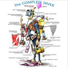 The complete scuba diver. This is how I feel right now! #scubadiver #scubadivingquotesunderwater #scubadivingquotestheocean