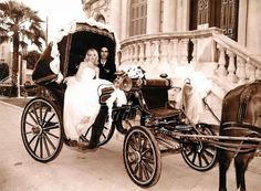 A classic old fashioned wedding carriage with horse