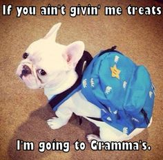 If you ain't giving me treats, I'm going to Grandma's.