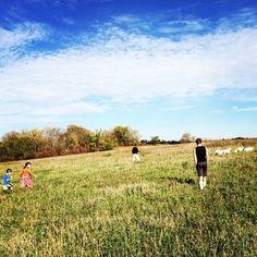 A family affair: we all stop to help Farmer Phil herd the sheep back into their paddock. #jailbreak #beautifulsundaymorning Sweetlove Farm, Jefferson County KS
