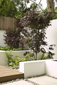 Variations in height and texture in garden structure | Elements give feeling of scale and add visual interest in this small outdoor space