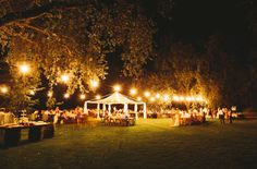Southern Backyard Wedding: This website has great ideas! : )