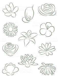 Flower Drawings Set of flowers. royalty-free set of flowers vector illustration stock vector art Doodle Drawings, Doodle Art, Pencil Drawings, Illustration Blume, Wood Illustration, Illustration Tattoo, Illustration Flower, Flower Doodles, Doodle Flowers