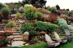 Landscaping Ideas For Sloped Backyard Simple W - The Janeti More