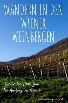 Vienna, Austria, Hiking, Outdoor, Places, Travel, Restaurants, Wanderlust, Bar