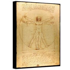 Art Wall Vitruvian Man by Leonardo Da Vinci Gallery Wrapped Canvas, 14 by 18-Inch, By Art Wall // $64.11  Features: - Artist: leonardo da vinci - Title: vitruvian man - Drawing, 1487, pen and ink on paper - Dimensions: 14x18 - Reproduction is completely made in the USA, printed on high quality canvas and professionally hand-stretched/gallery wrapped-  >>Get Inspired! - Visit http://artcaffeine.imobileappsys.com