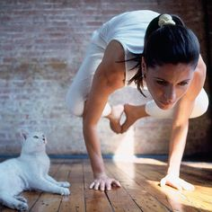 Yes, cat yoga is really a thing. (And it's just as amazing as it sounds.)