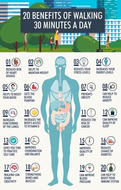 Strengthens the heart and prevents cardiovascular diseases. Walking at least 30 minutes a day reduces the risk of heart disease and stroke by up to This exercise is ideal for controlling high blood pressure; it improves circulation reduces bad chole Health Facts, Health And Nutrition, Health Tips, Health Fitness, Fitness Hacks, Health Heal, You Fitness, Power Walking, Walking Club