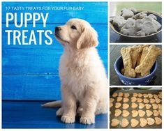 17 Puppy Treats for Your Best Friend #justapinchrecipes