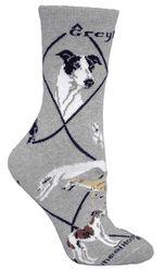 Greyhound on Gray Socks